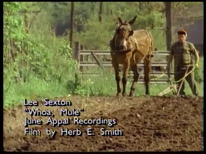 Lee Sexton - Whoa Mule (Music Video)
