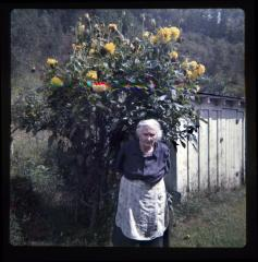 Woman standing in front of sunflowers and shed
