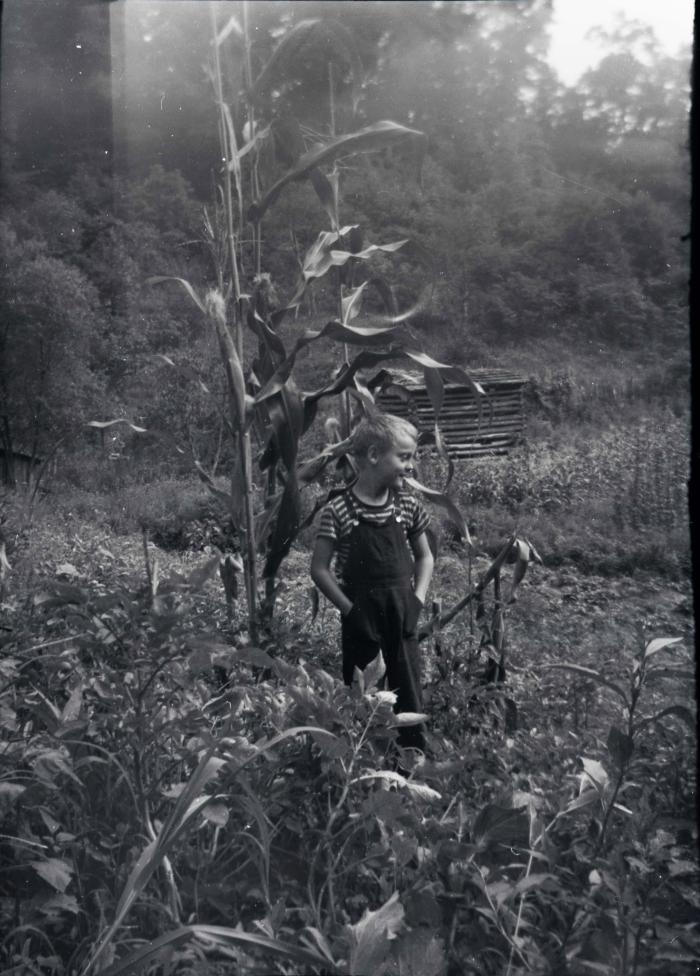 Image of boy in bean garden