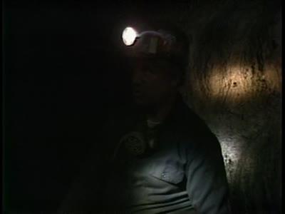 Inside the mine - jokes, animals