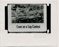 "Film still, ""Coon on a Log Contest"" Judge Wooten production still"